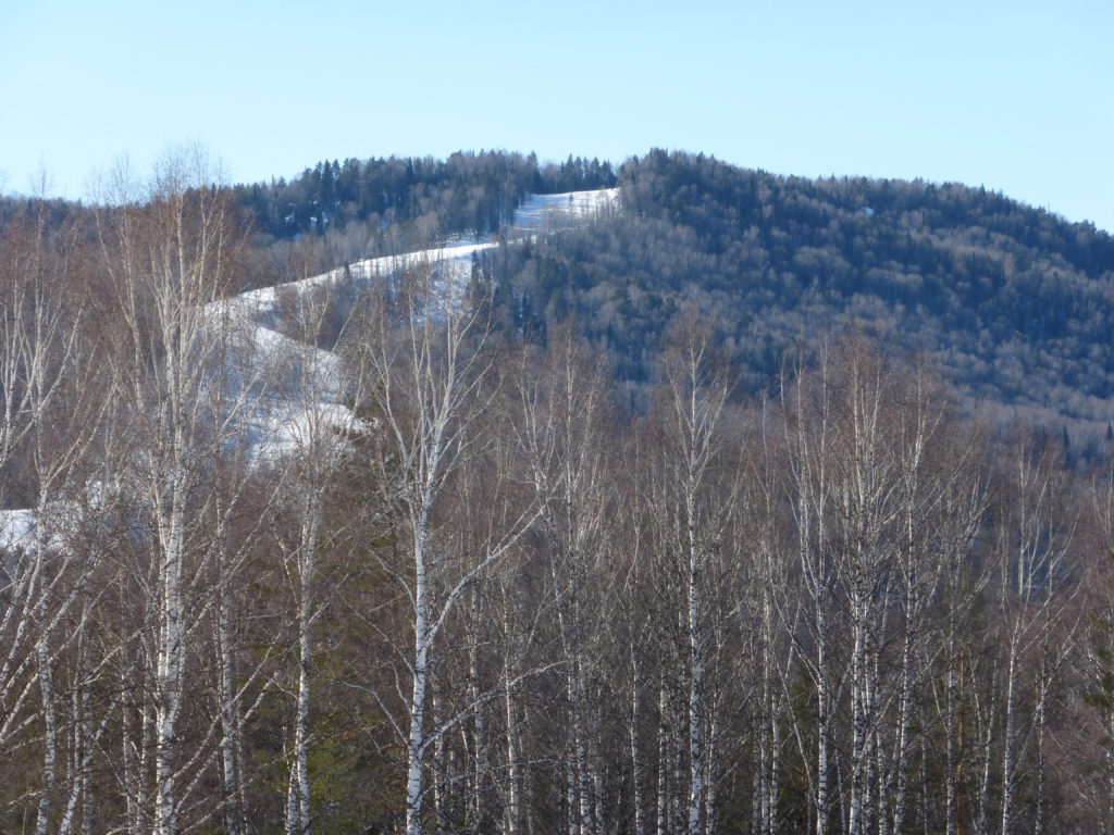 Еще фото с вершины Белокуриха 2