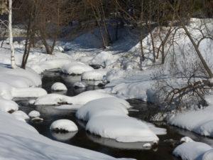 Речка внутри Белокурихи