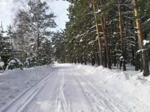 По дороге Енисейское ключ алтайский край